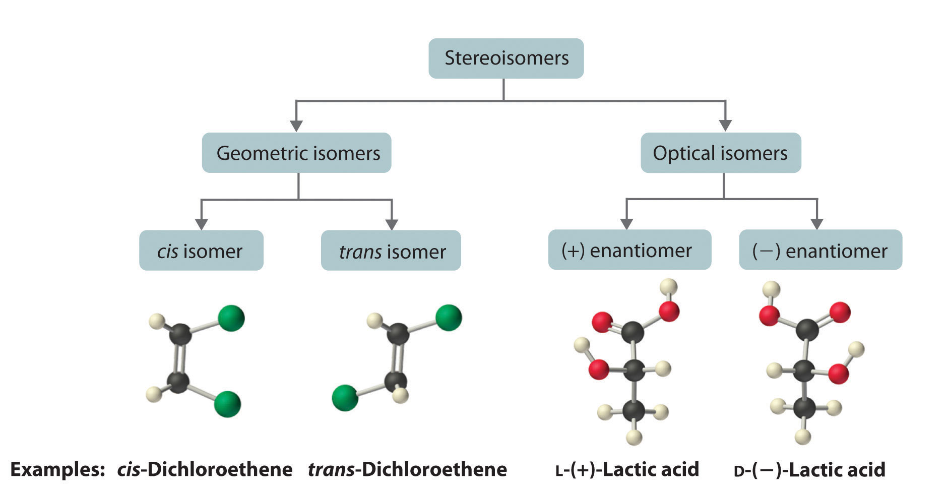 Isomers Of Organic Compounds