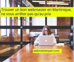 trouver un bon webmaster en Martinique