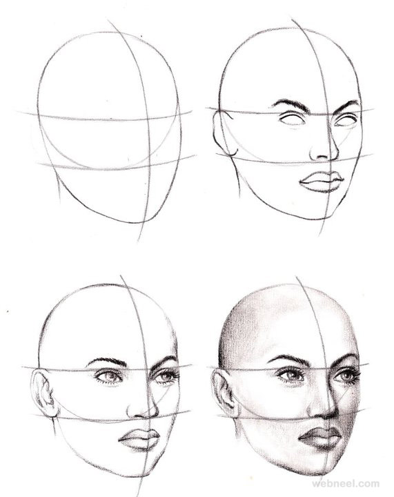 Face Drawing 6