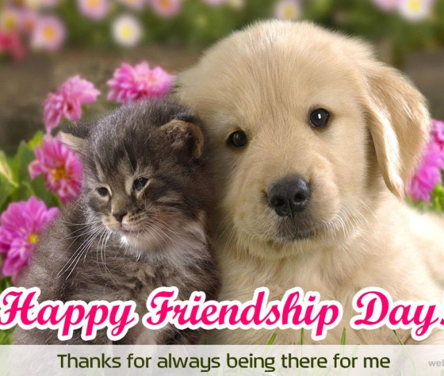 Happy Friendship Day Greetings Friendship Day Greetings