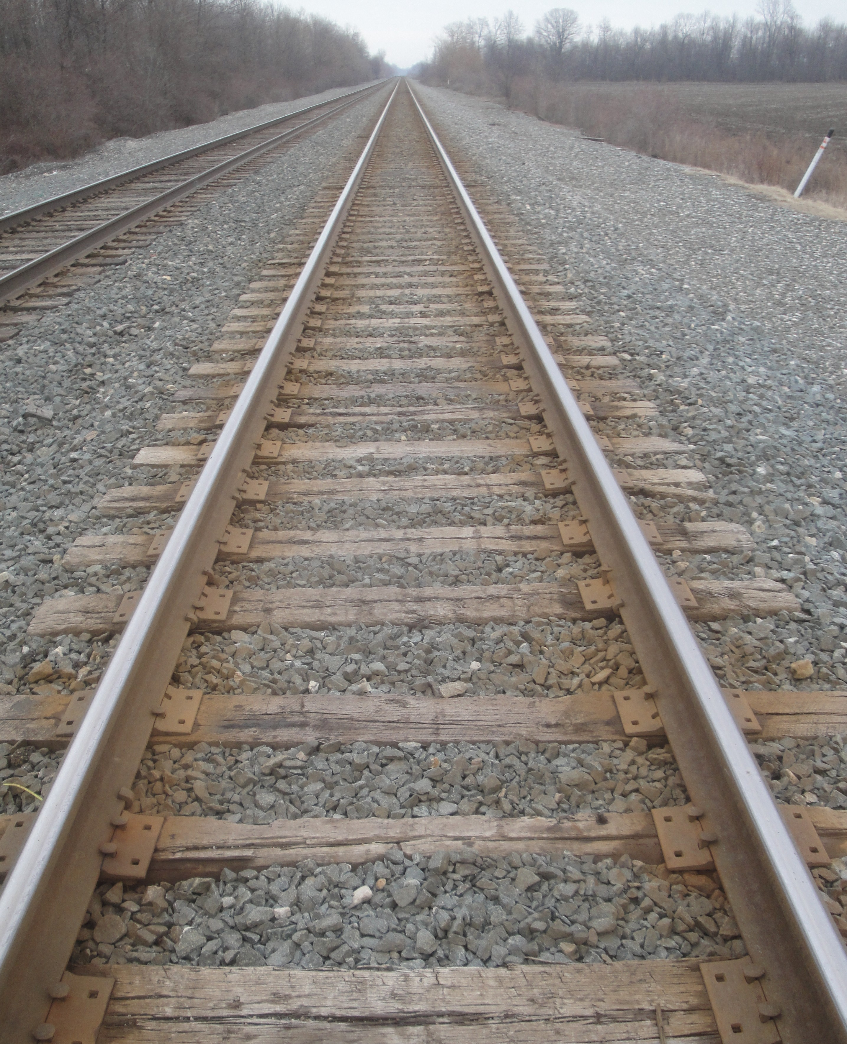A Perspective On Train Tracks