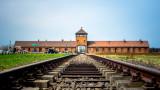 Survivors warned 75 years after Auschwitz's release