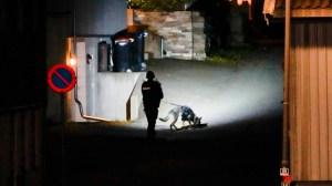 Дейн, приел исляма, извърши убийство в Норвегия