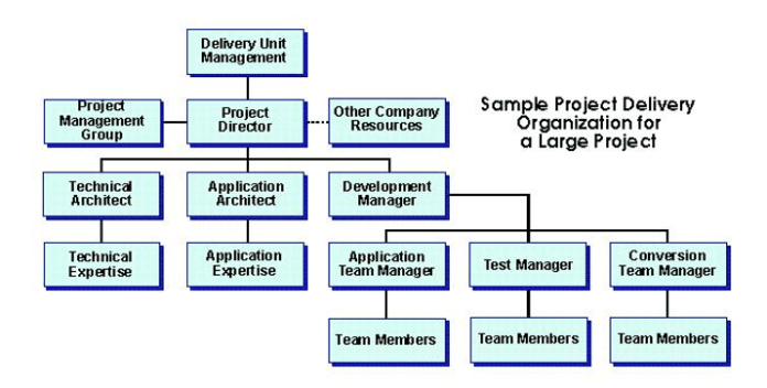 project-delivery-organization-for-large-project