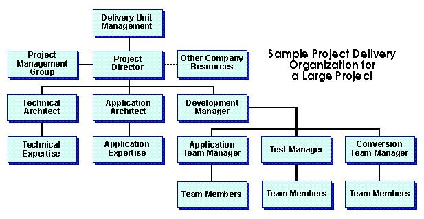 Sample Project Delivery Organization for a large project
