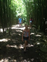 Telling the Bamboo panda story
