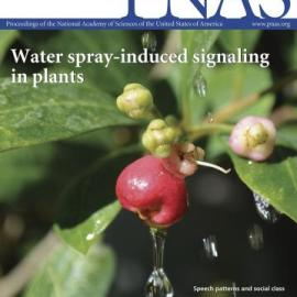 PNAS paper has published on line