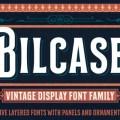 Billcase-600x400 Jpg