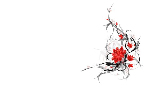 1920 × 1080 Flower white abstract wallpapers hd download