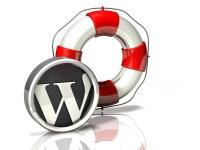 durango wordpress design rescue