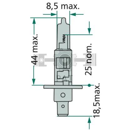 — 44712258PRC1 — koplamp en mistlicht (voor) P 14,5s —