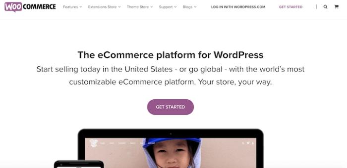 5 Great WordPress Theme Companies - Website Creation Workshop