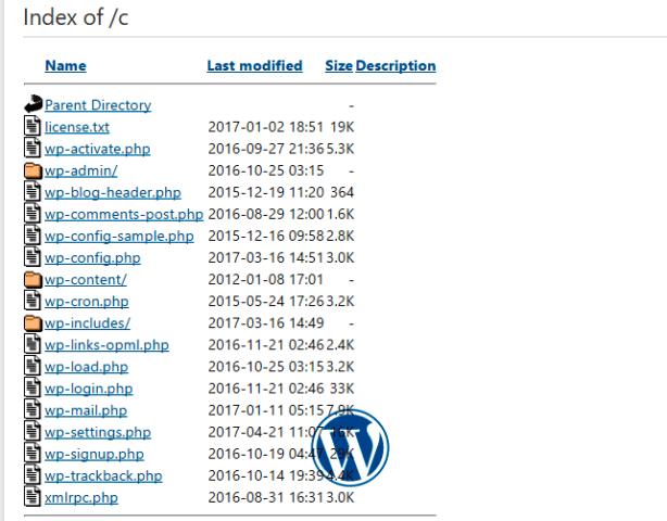 wordpress index of error