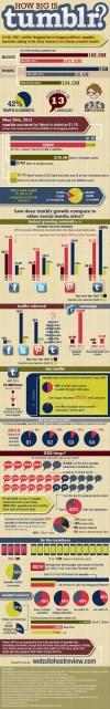 How Big is tumblr?