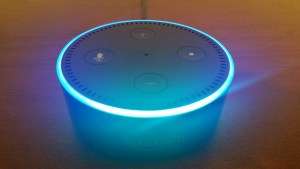 WebSLX.com Amazon Echo Dot