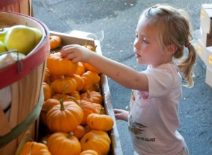 Four-year-old Abby Monroe picks out a mini pumpkin at the Kirkwood Farmer's Market on Monday, Sept. 12. Monroe and her mother also bought produce at the market. PHOTO BY BRITTANY RUESS/ The Journal