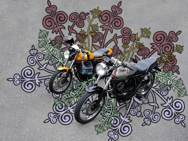 Motorcycles with Designs Under Them