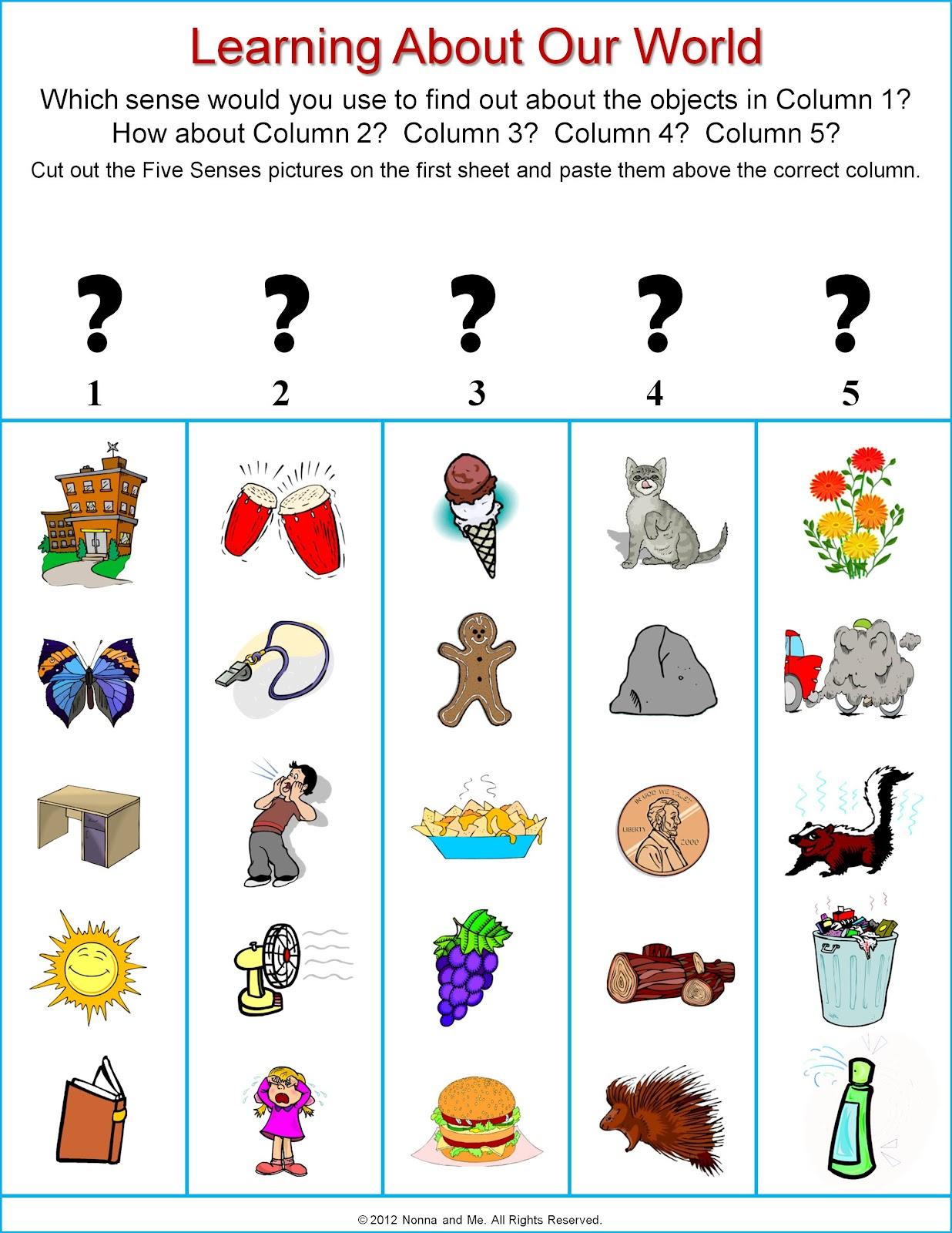 5 Senses Clipart Grade 1 5 Senses Grade 1 Transparent