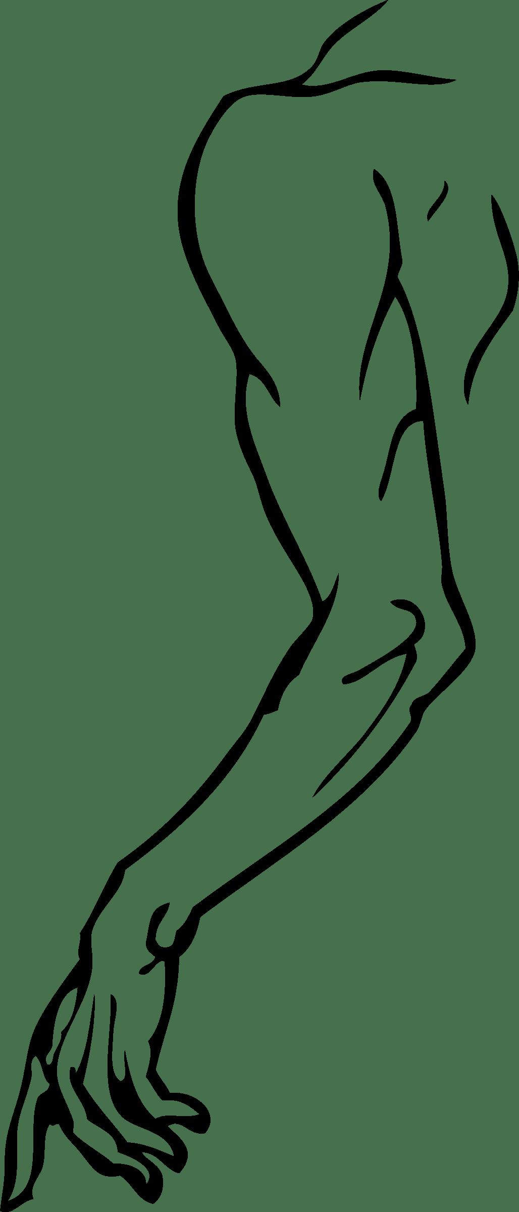 Arm Clipart Left Arm Arm Left Arm Transparent Free For