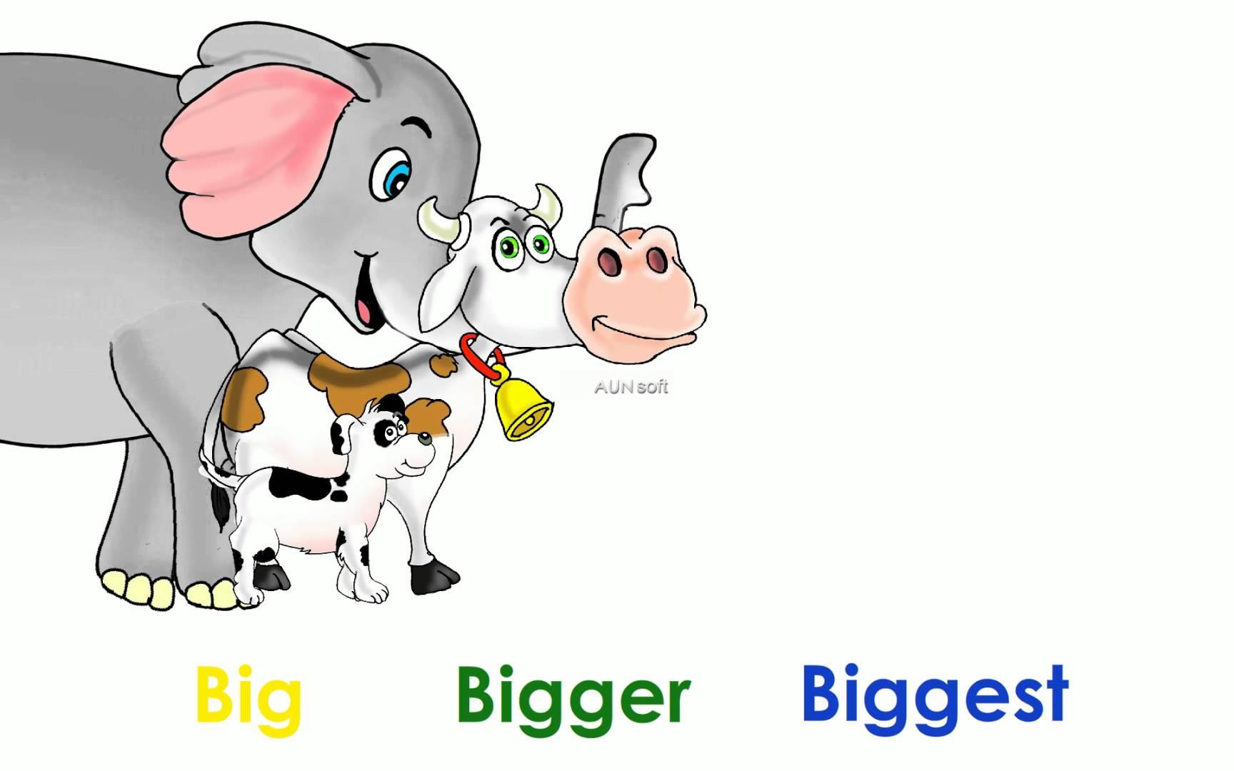 Big Bigger Biggest Worksheets