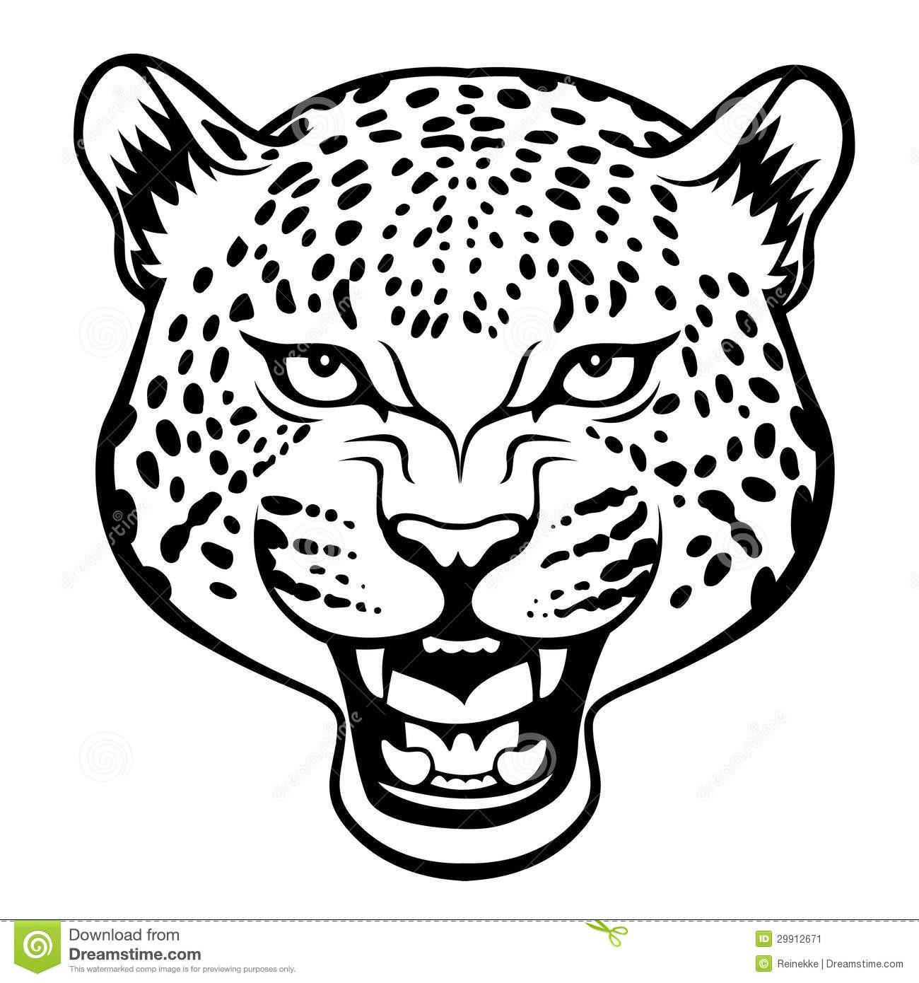 Cheetah Clipart Leopard Cheetah Leopard Transparent Free