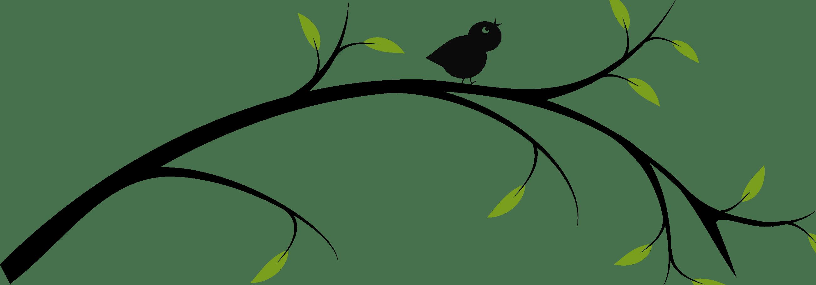 Vines Clipart Bird Vines Bird Transparent Free For