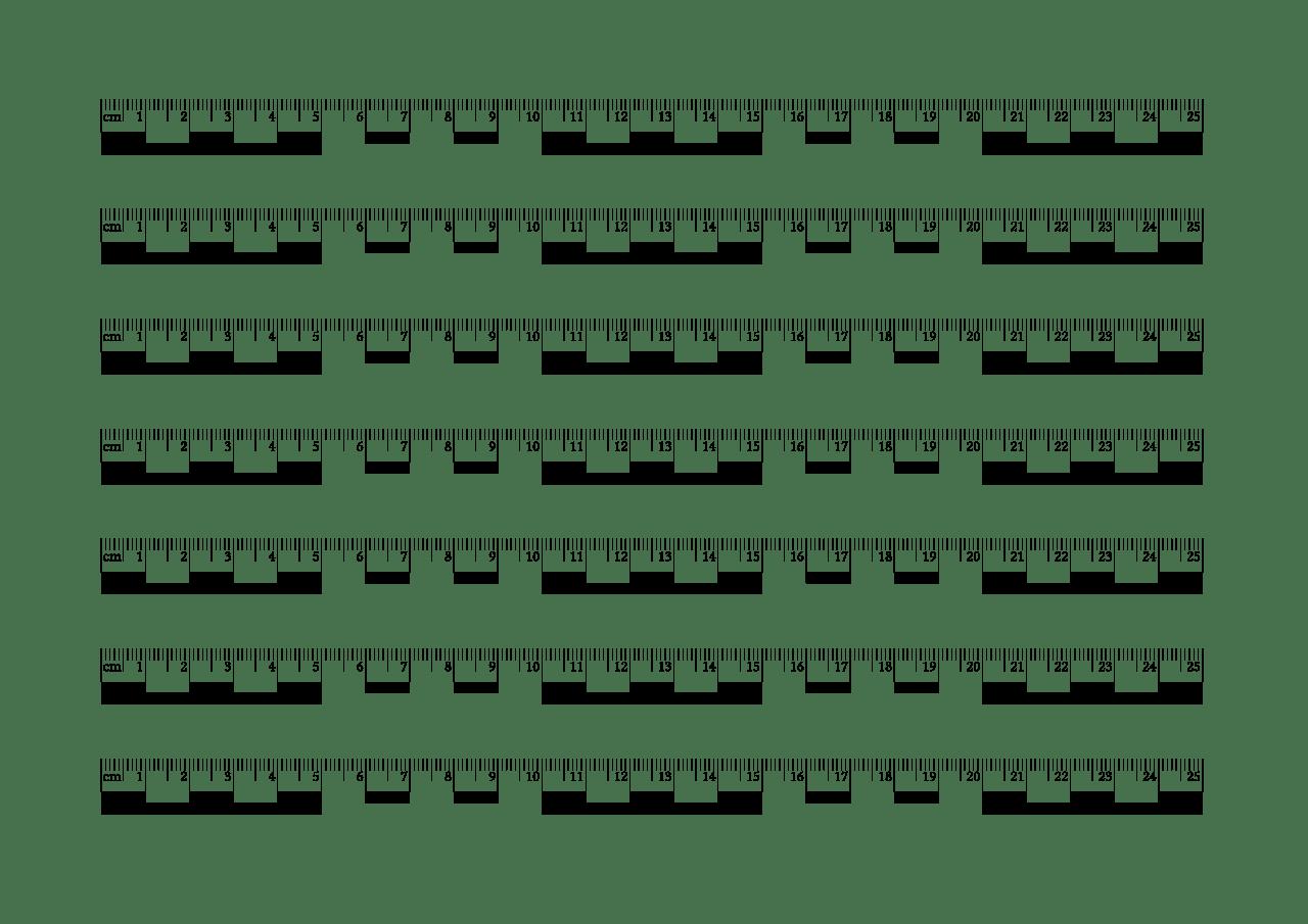 Ruler Clipart Life Size Ruler Life Size Transparent Free