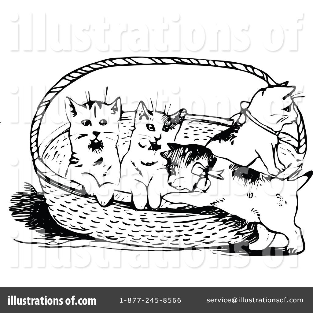 Kitten Clipart Litter Kitten Kitten Litter Kitten