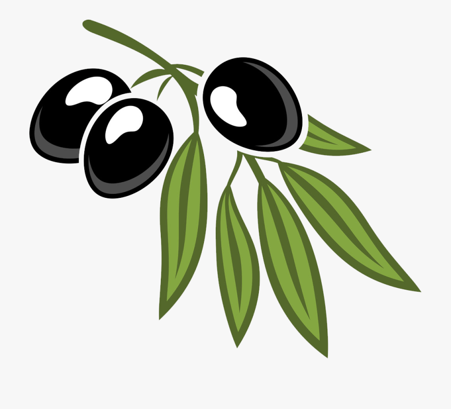 Download Olive clipart cartoon, Olive cartoon Transparent FREE for ...