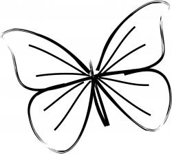 Butterflies Clipart Simple Picture 141488 Butterflies Clipart Simple
