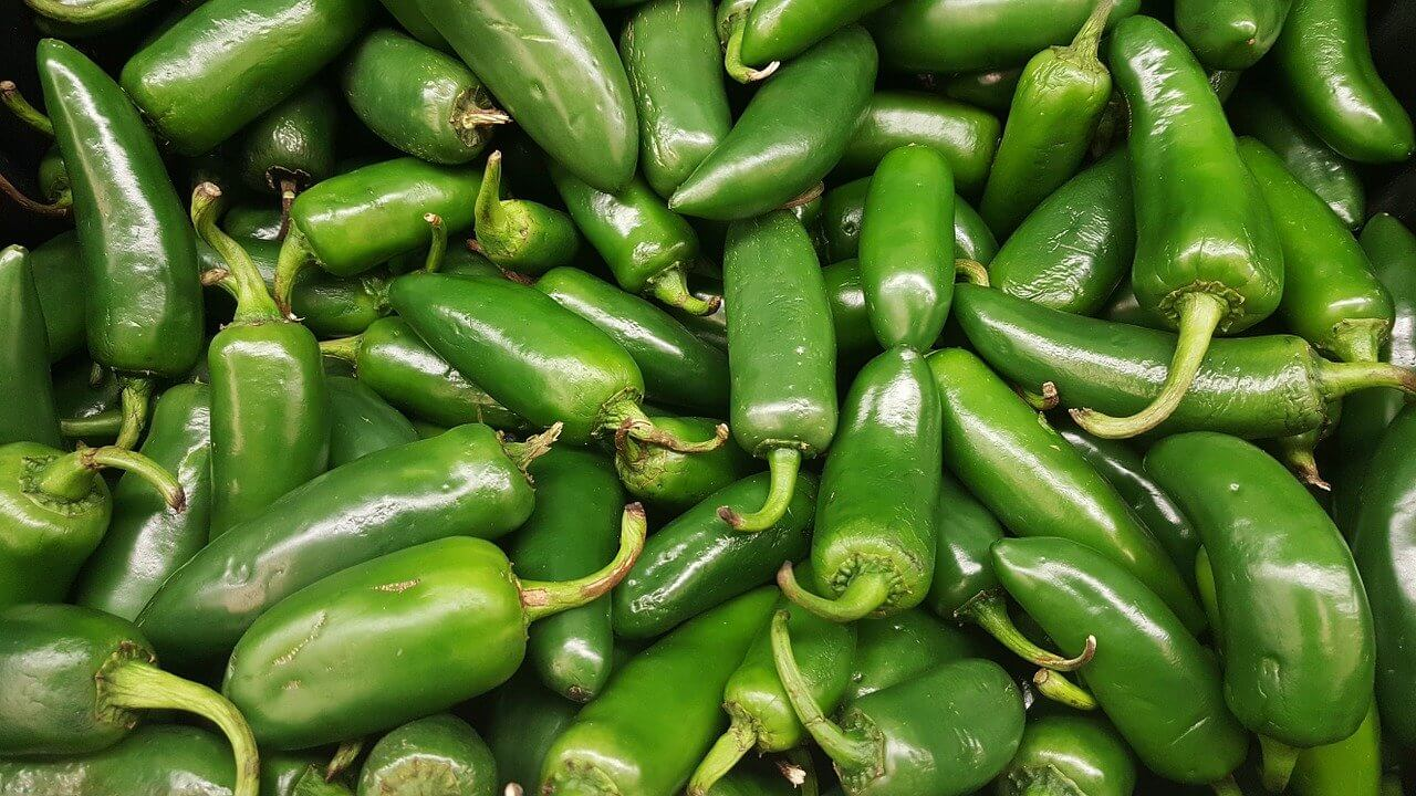 How to Grow Peppers? What are the Types of Pepper?