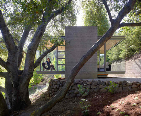 Glass Getaway: Tranquil Tea Houses In The Trees