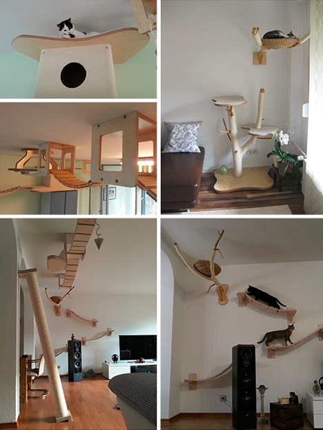 3D Cat Furniture Set Modular Hangouts For Walls Amp Ceilings Urbanist