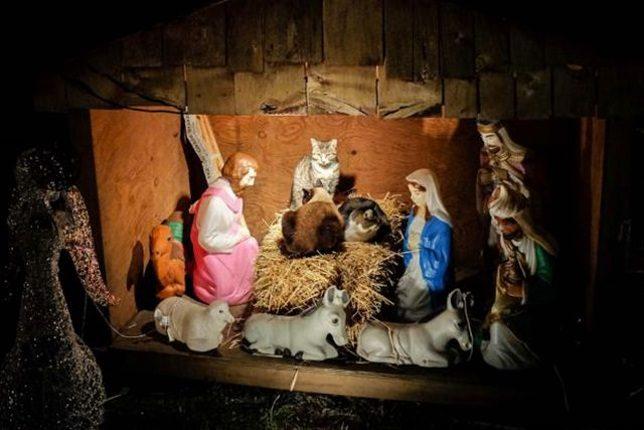 Strange Manger The Worlds Weirdest Nativity Scenes