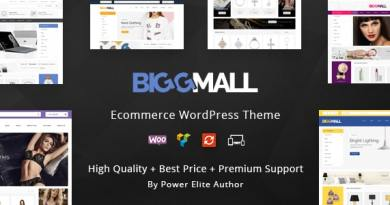 BiggMall - Multipurpose WooCommerce Theme 3