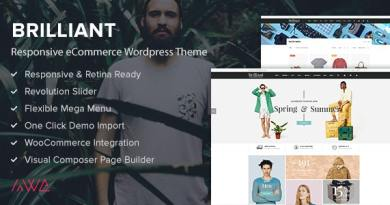 Brilliant - Responsive eCommerce WordPress Theme 4