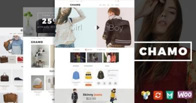 Chamo - Responsive WooCommerce WordPress Theme 4