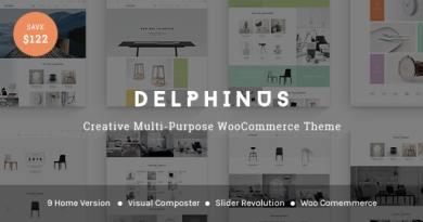 Delphinus - Creative Multi-Purpose WooCommerce Theme 4