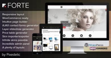 Forte — Multipurpose WP Theme (WooCommerce Ready) 2