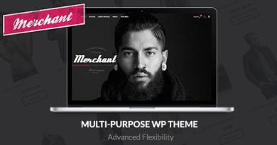Merchant - Responsive WordPress Theme 3