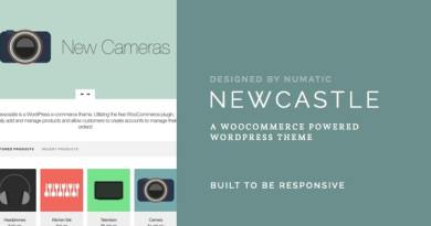 Newcastle - A WooCommerce Powered WordPress Theme 2