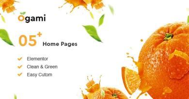 Ogami - Organic Store WordPress Theme 4