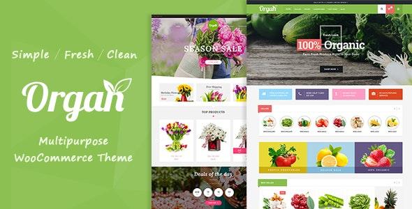 Organ - Organic Store & Flower Shop WooCommerce Theme 2