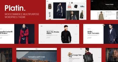 Platin WooCommerce Multipurpose WordPress Theme 2
