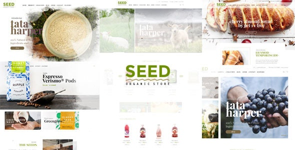 Seed - Organic WordPress Theme 1