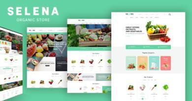 Selena - Organic Food Store Theme for WooCommerce WordPress 10
