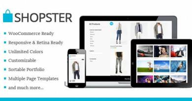 Shopster - Retina Responsive WooCommerce Theme 4