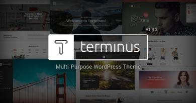 Terminus - Responsive Multi-Purpose WordPress Theme 2