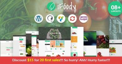 VG iFoody - Responsive WooCommerce WordPress Theme 3