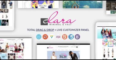 WP Clara - Multipurpose Responsive Minimalist WordPress Theme 3